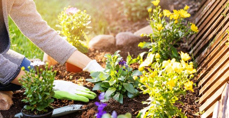 Hoe je tuin aanleggen?